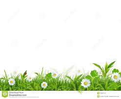 spring background pictures free 47 spring hd wallpapers