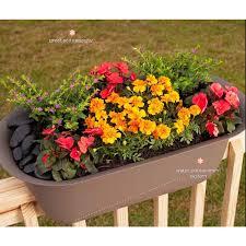 bloem modica chocolate plastic 24 inch deck rail planter free