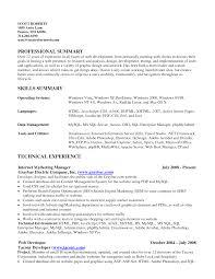 software developer resume summary resume summary resume template summary resume templates medium size template summary resume templates large size