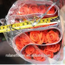 Wholesale Fresh Flowers Wholesale Fresh Cut Flower Buyer Fresh Anthurium Rose Yunnan All