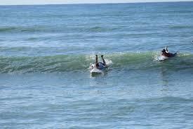 thanksgiving surf surf hnl surfhnl twitter