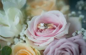 Wedding Flowers Sunshine Coast Wedding Flowers Sunshine Coast By Jabula Roses