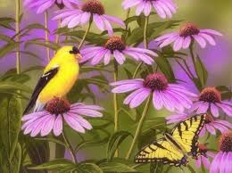 Flowers For Birds And Butterflies - finch u0026 butterfly among flowers birds u0026 animals background