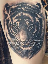 best 25 tiger face tattoo ideas on pinterest animal faces