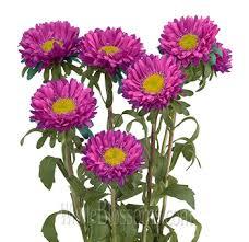 purple wedding flowers wholesale purple flowers for wedding