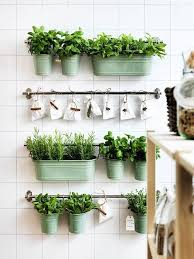 garden kitchen ideas ideas for a stylish indoor kitchen herb garden apartment therapy