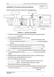 parts of a plant cell science vocabulary worksheet science