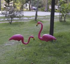 garden flamingos australia new featured garden flamingos at best