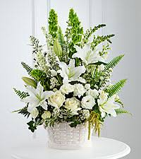 Bells Of Ireland Flower Send Flowers To Bell Of Ireland Delivered By Ftd