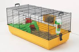 Rabbit Hutch Set Up The Rabbit Whisperer Making A Home For Your Bunny