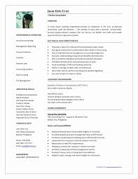 curriculum vitae template accountant cv doc resume format for accountant doc beautiful professional curriculum