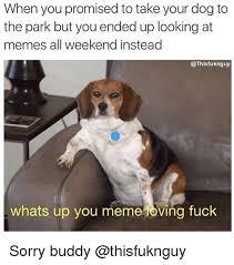 Meme Loving Fuck - 25 best memes about meme loving fuck meme loving fuck memes