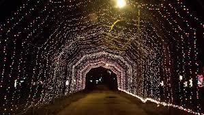 top 10 holiday light displays in hendricks county