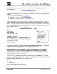 Format Of Dispute Letter rdi free credit report and sle dispute letter rural dynamics