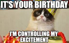 Grumpy Cat Meme Happy - best happy birthday cat meme