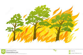 tree on fire clipart clipartxtras