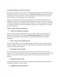 Resume Sle Objectives Sop Proposal - objectives to put on resume roberto mattni co