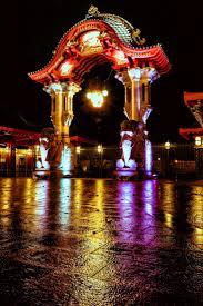Zoo Lights Boston by Best 25 Zoo In Berlin Ideas On Pinterest Hotel Berlin Q