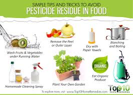 Home Tricks Simple Tips And Tricks To Avoid Pesticide Residue In Food Top 10