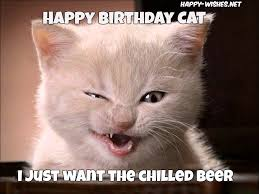 Happy Birthday Cat Memes - happy birthday wishes for cats quotes images memes happy wishes