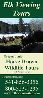 Oregon wildlife tours images Wildlife tours jpg
