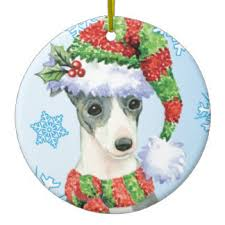italian greyhound gifts on zazzle