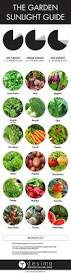 Vegetable Container Gardening Guide by Best 25 Garden Guide Ideas On Pinterest Vegetable Gardening