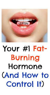 the leptin diet approved recipes leptin diet pinterest
