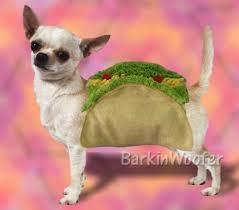 Taco Costume Dog Puppy Costume Taco Barkinwoofer