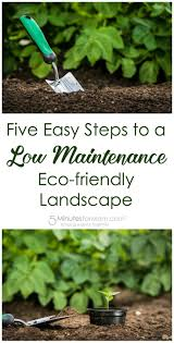 gardening tips 661 best gardening tips images on pinterest veggies gardening
