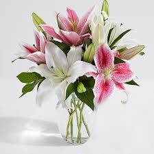 Flowers Delivered With Vase Flowers Under 20 Dollars At Proflowers