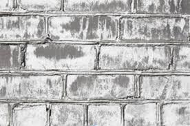 White Mold In Basement Dangerous by Is White Mold Dangerous