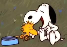 charlie brown thanksgiving gif image snoopycomehome7 png peanuts wiki fandom powered by wikia