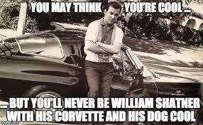 William Shatner Meme - shatner corvette dog meme steve prestegard com the presteblog