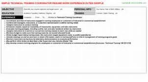Resume Headline Samples by Cv Of A Banking Professional Platinum Class Limousine Resume
