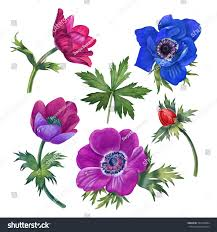 watercolor hand painted flowers can be stock illustration