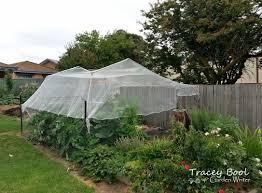 Greenhouse Gazebo Handy Tip Plant Gazebo Tracey Bool Garden Writer