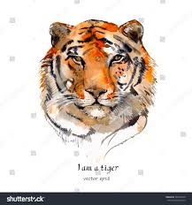 portrait tiger watercolor stock vector 266979740 shutterstock
