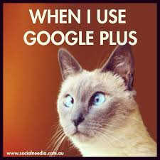 Google Plus Meme - when i use google plus meme jordana borensztajn s social needia