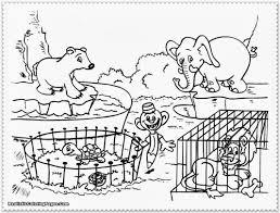 coloring zoo coloring sheets
