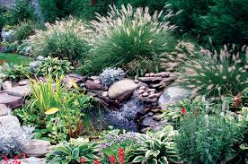 designing with ornamental grasses state by state gardening web