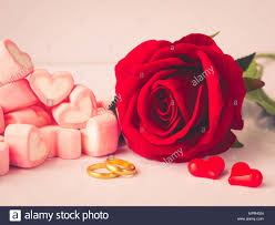 red rose rings images Romantic red rose with golden rings and red hearts on white jpg
