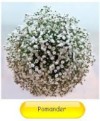baby breath flowers how to make a fresh baby s breath flower