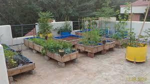 terrace gardening sustainable living pune