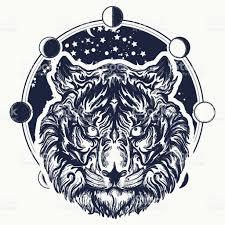 tiger tiger portrait against background of universe symbol