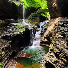 Watkins glen state park upstate new york