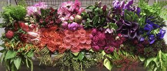 flowers delivered today orchid des moines florist des moines flower shops mothers
