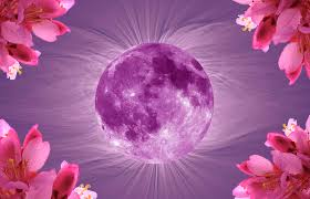 april 2017 pink full moon in libra and 5 planet retrograde