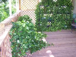 garden design garden design with gramercy park nyc roof garden