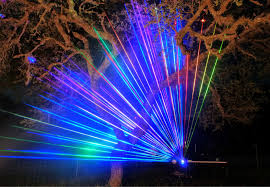 laser mapping a small oak tree laser spectacles inc
